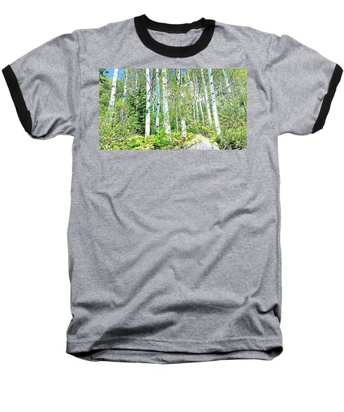 Aspen Splender Steamboat Springs Baseball T-Shirt by Joseph Hendrix