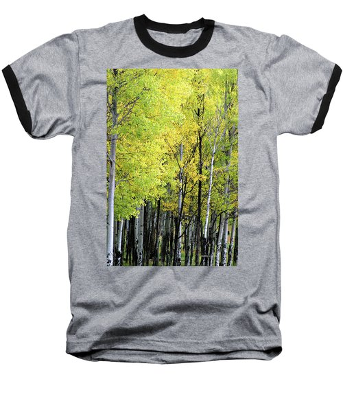 Aspen Splendor Baseball T-Shirt