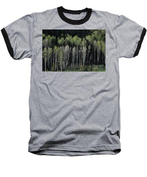 Aspen Spring Baseball T-Shirt