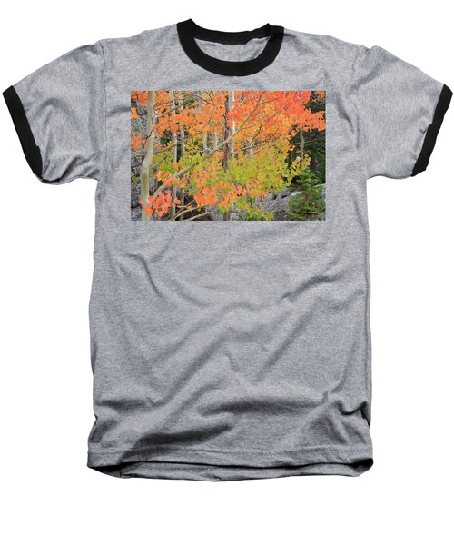 Aspen Stoplight Baseball T-Shirt
