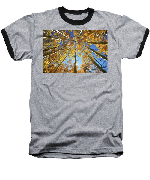 Aspen Tree Canopy 2 Baseball T-Shirt