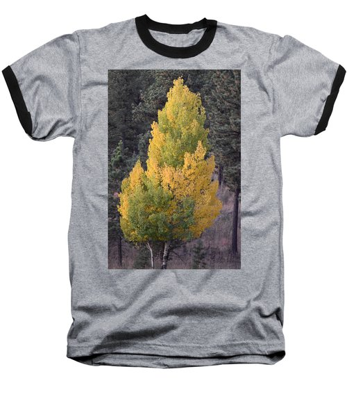 Aspen Tree Fall Colors Co Baseball T-Shirt