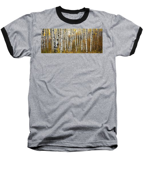 Aspen Tree Grove Baseball T-Shirt