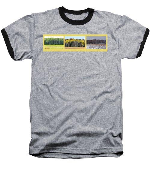 Aspen Triptych Baseball T-Shirt