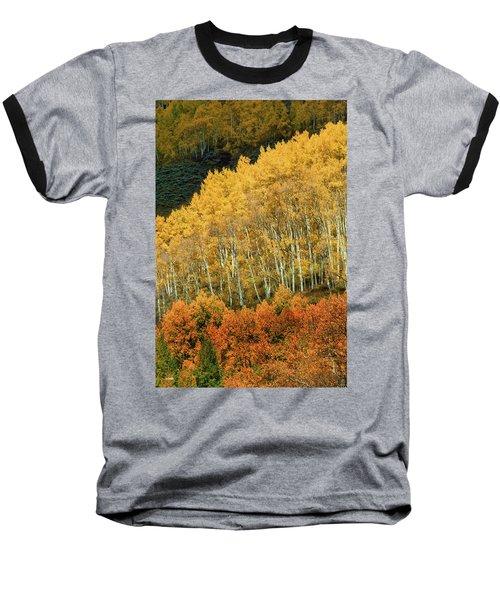 Aspen Waves Baseball T-Shirt by Dana Sohr