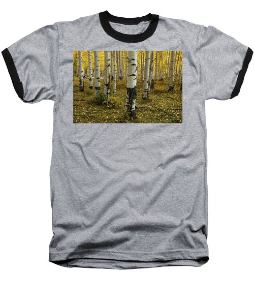 Aspens - 0245 Baseball T-Shirt