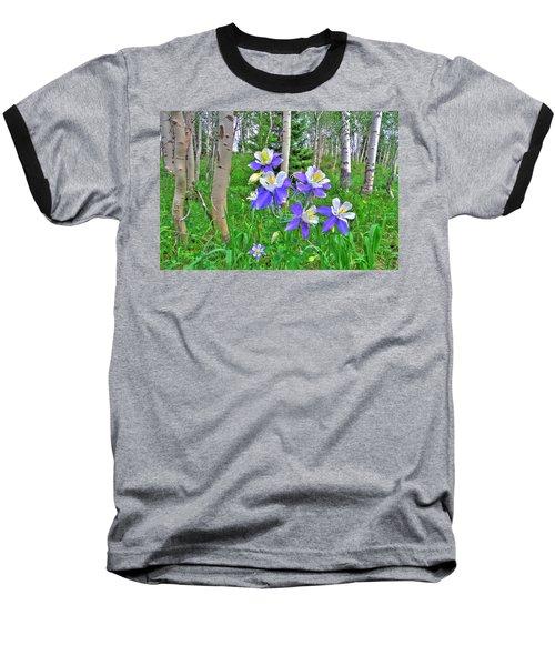 Aspens And Columbines Baseball T-Shirt by Scott Mahon