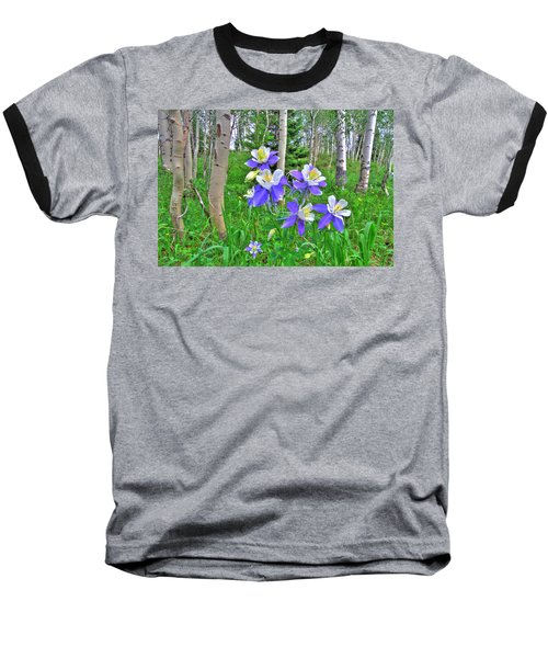 Aspens And Columbines Baseball T-Shirt