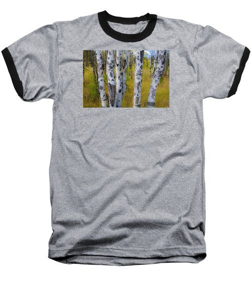 Baseball T-Shirt featuring the photograph Aspens by Gary Lengyel