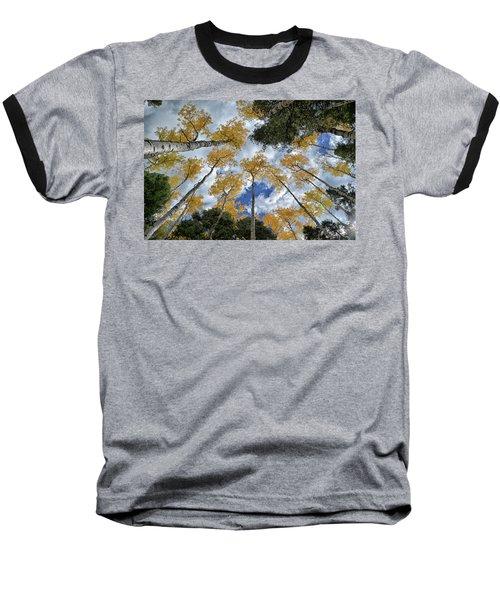 Aspens Reaching Baseball T-Shirt by Kevin Munro