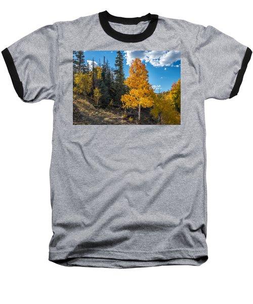 Aspen Tree In Fall Colors San Juan Mountains, Colorado. Baseball T-Shirt by John Brink