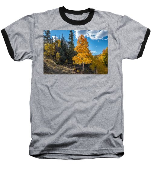 Aspen Tree In Fall Colors San Juan Mountains, Colorado. Baseball T-Shirt