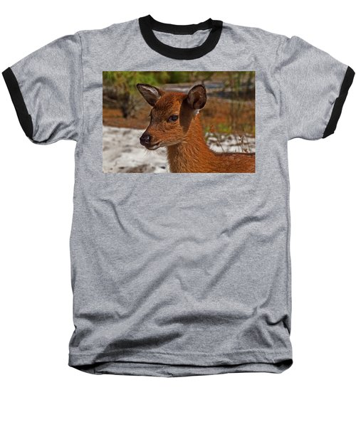 Assateague Island Sika Deer Fawn Baseball T-Shirt