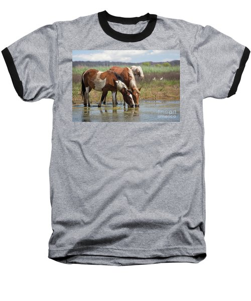 Assateague Ponies Tale Drink Baseball T-Shirt