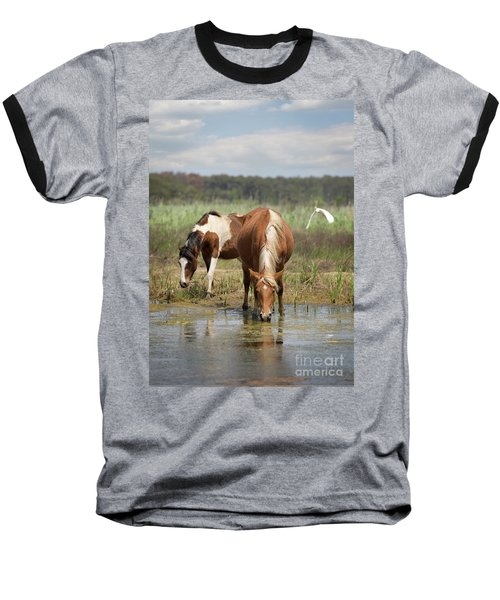 Assateague Pony Pair Baseball T-Shirt