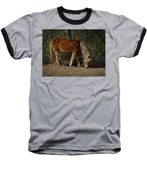 Assateague Wild Pony Baseball T-Shirt