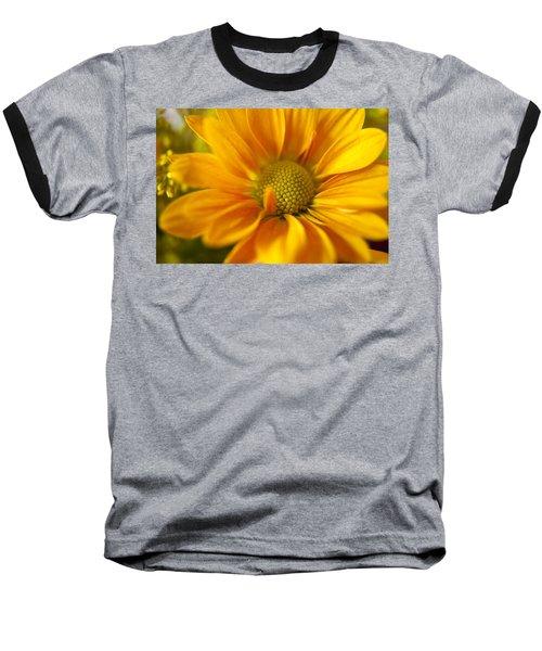 Aster Close Up Baseball T-Shirt