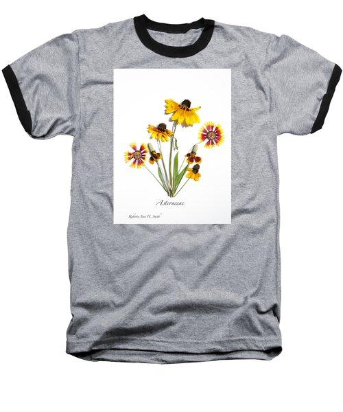 Asteraceae Baseball T-Shirt