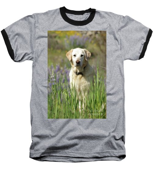 At Attention Baseball T-Shirt by Jim and Emily Bush