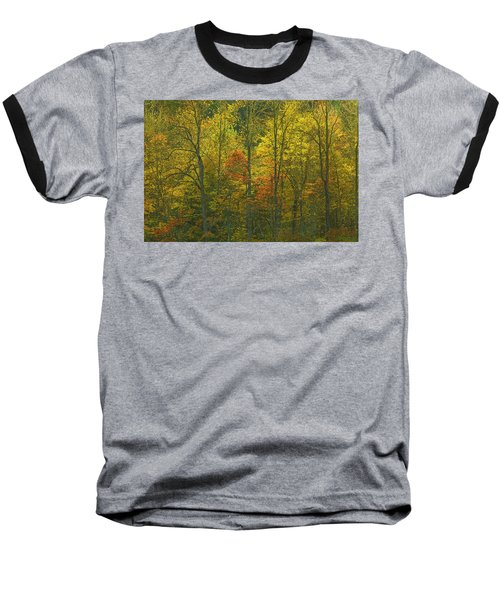 At The Edge Of The Forest Baseball T-Shirt by Ulrich Burkhalter