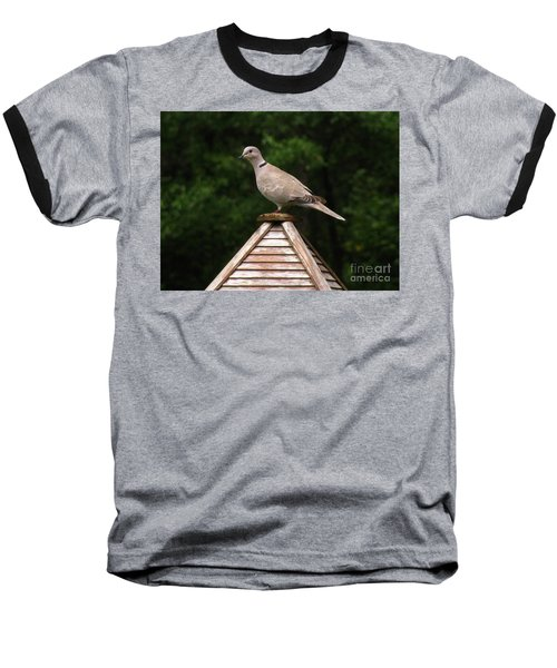 At The Top Of The Bird Feeder Baseball T-Shirt by Donna Brown