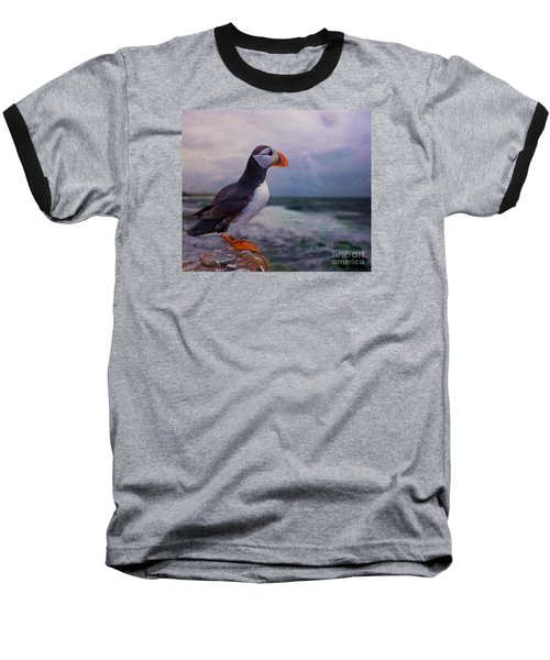 Atlantic Puffin Baseball T-Shirt by Jim  Hatch