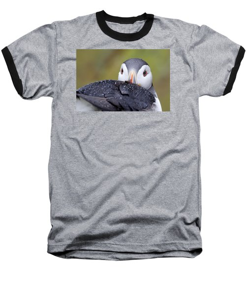 Atlantic Puffin With Rain Drops Baseball T-Shirt