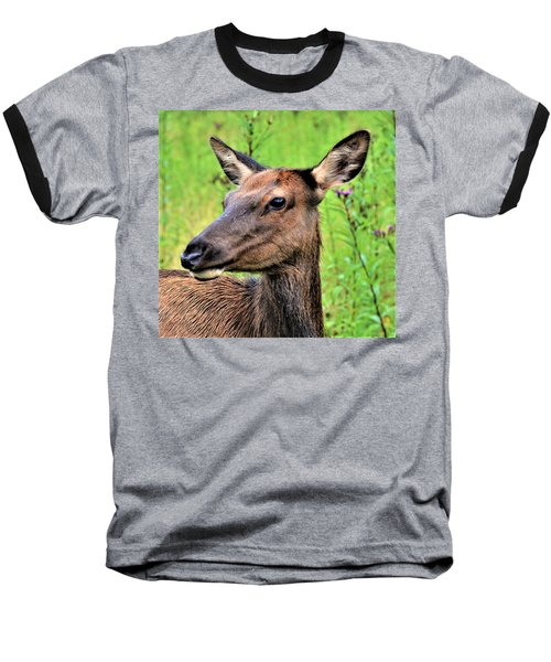 Attentive Yearling Baseball T-Shirt
