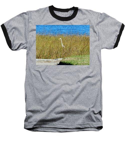 Audubon Park Sighting Baseball T-Shirt