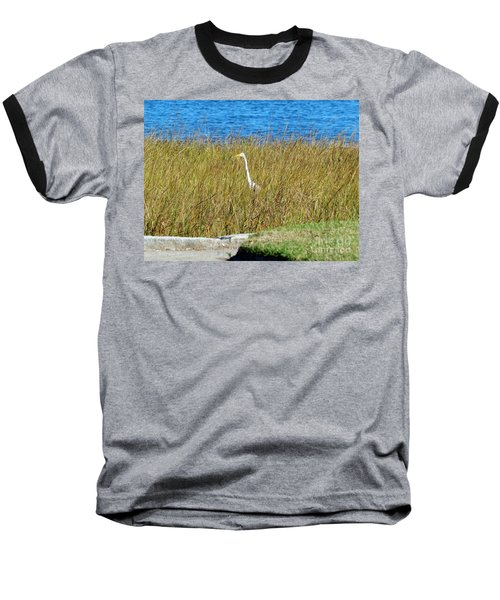 Audubon Park Sighting Baseball T-Shirt