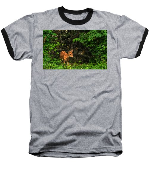 August Fawn Baseball T-Shirt by Trey Foerster