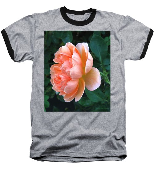 Baseball T-Shirt featuring the photograph August Rose 09 by Joyce Dickens