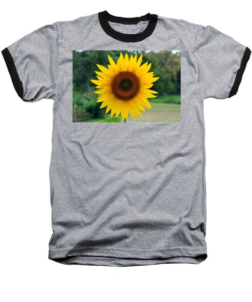 August Sunflower Baseball T-Shirt by Jeff Severson