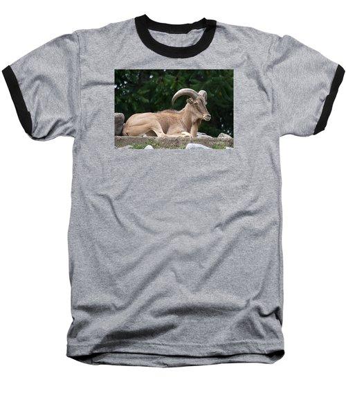 Auodad 20120714_80a Baseball T-Shirt