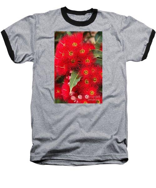 Australian Red Eucalyptus Flowers Baseball T-Shirt by Joy Watson