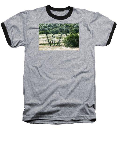 Autumn And Grass In Isle Of Skye, Uk Baseball T-Shirt by Dubi Roman
