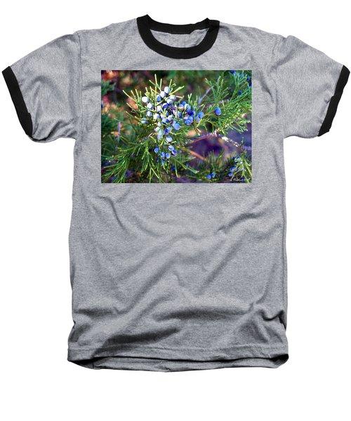 Baseball T-Shirt featuring the photograph Autumn Berries by Betty Northcutt