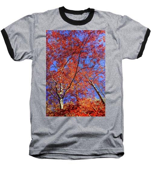 Autumn Blaze Baseball T-Shirt by Karen Wiles