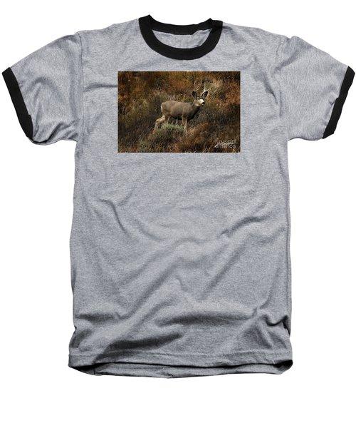 Autumn Buck Baseball T-Shirt