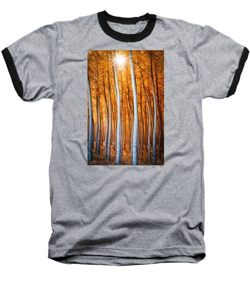 Autumn Canopy Burst Baseball T-Shirt