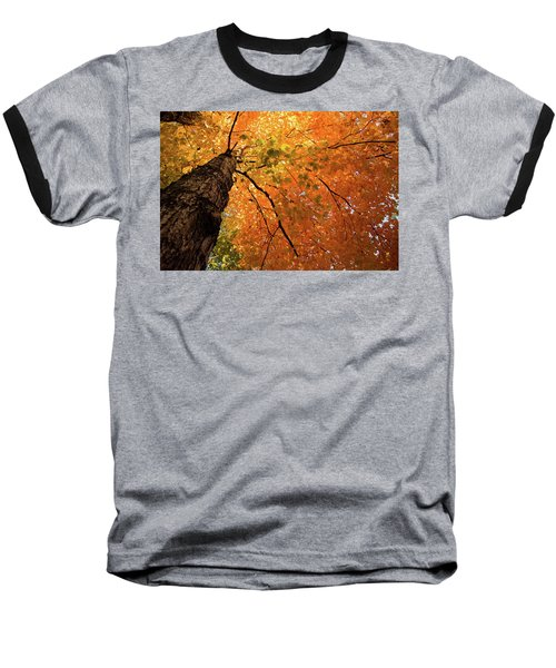 Autumn Canopy In Maine Baseball T-Shirt