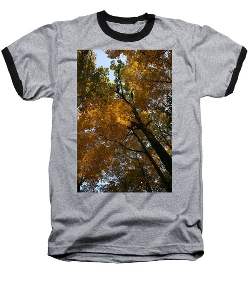 Autumn Canopy Baseball T-Shirt by Shari Jardina