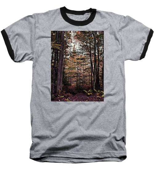 Autumn Color In The Woods Baseball T-Shirt by Joy Nichols