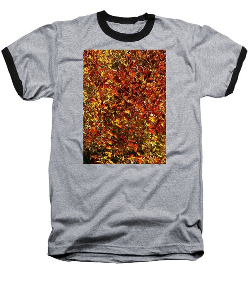 Autumn Colors Baseball T-Shirt by Karen Harrison