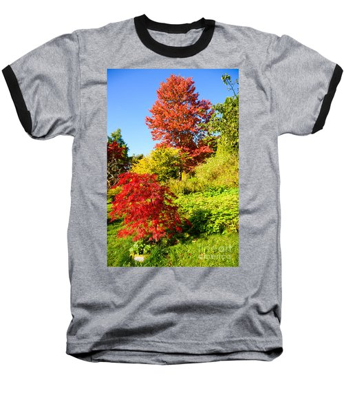 Autumn Colours Baseball T-Shirt by Colin Rayner