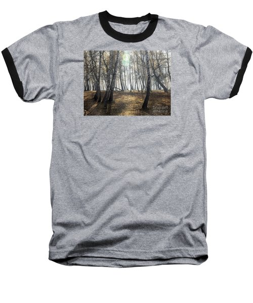 Autumn Deep Fog In The Morning Birch Grove Baseball T-Shirt by Odon Czintos