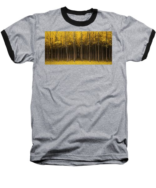 Autumn Fantasy Baseball T-Shirt by Bjorn Burton