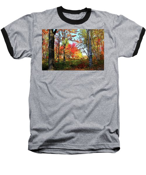 Autumn Forest Baseball T-Shirt by Debbie Oppermann