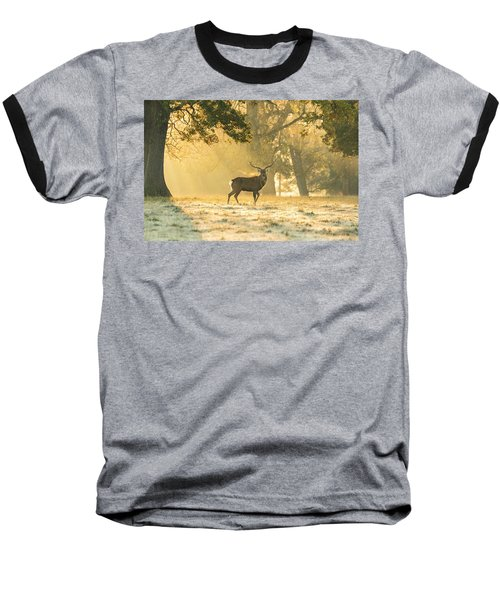 Baseball T-Shirt featuring the photograph Autumn Frost by Scott Carruthers