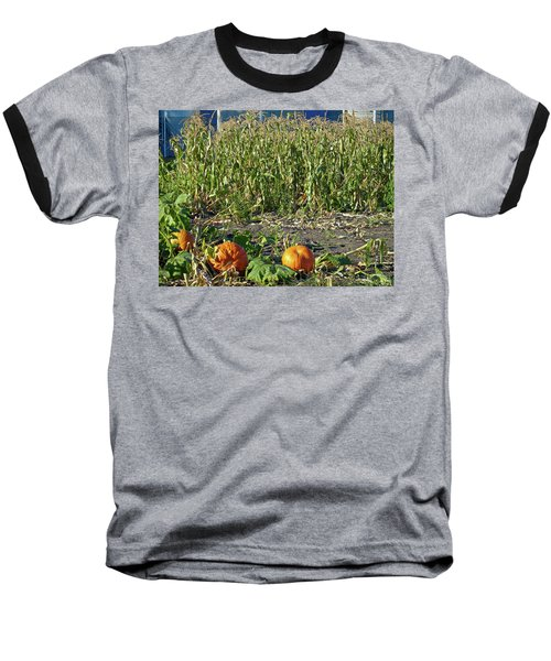 Autumn Harvest Baseball T-Shirt